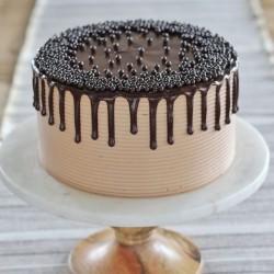 Chocolate Rich Cake [1kg]