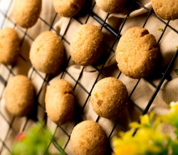 Australian Coconut Cookies [500 Gram]