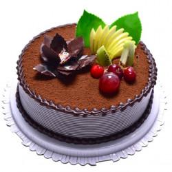 CAKES CREAM COFFEE D4 (E/L)