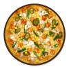 PANEER TIKKA & CORN PIZZA